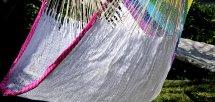 Rainbow  tribe(レインボートライブ)