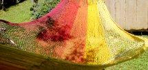Hot rainbow (ホットレインボー)