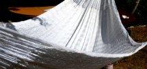 Silky white  (シルキーホワイト)