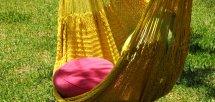 Bright yellow (ブライトイエロー)