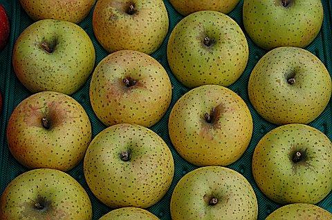 王林(おうりん) 販売終了しました。  黄色リンゴの定番 酸味無く柔らかめの肉質でファン多 約16個〜18個詰め画像3