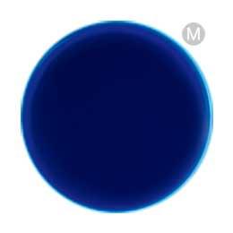 acegel エースジェル カラージェル  461M ブルーヴェール  2.5g