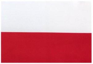世界の国旗 ミニタオル・ハンドタオル...
