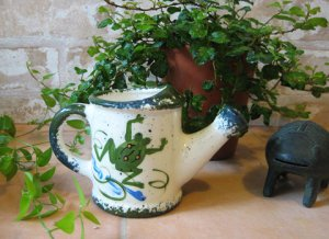 Frog Watering Can Flower Pot