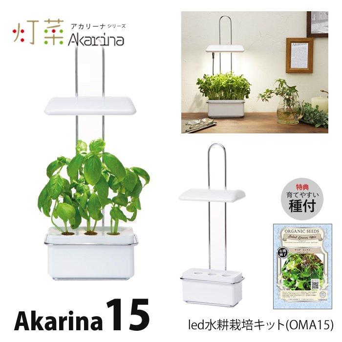 LED 水耕栽培 Akarina15