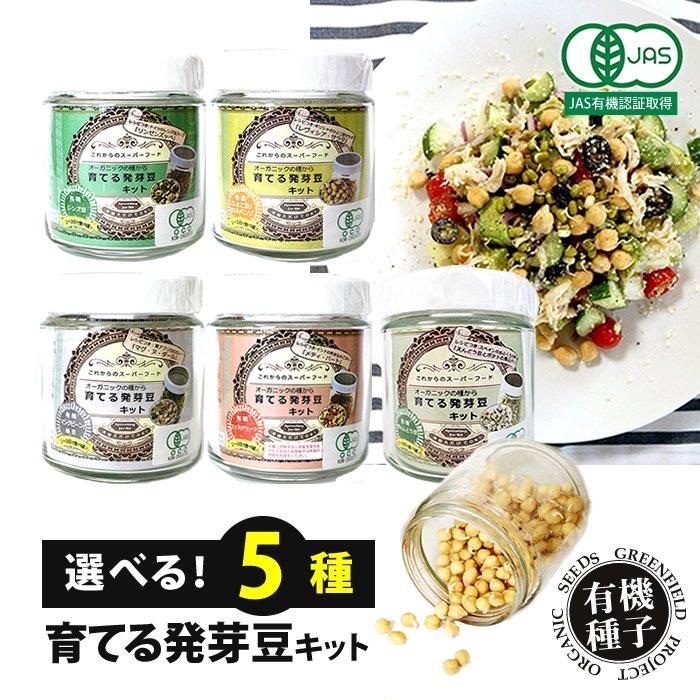 プチ栽培セット オーガニックの種から育てる発芽豆 栽培キット【選べる4種】