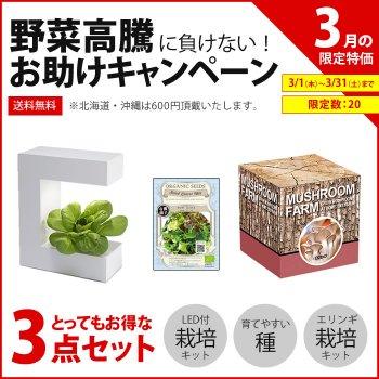 【3月特価】LED栽培キット+エリンギ栽培+育てやすい種のセット