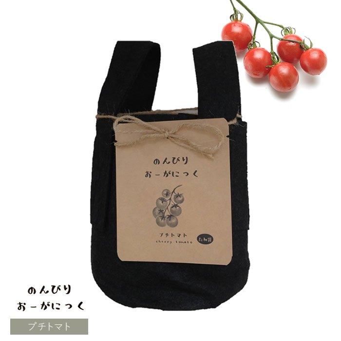 オーガニック栽培キット プチトマト