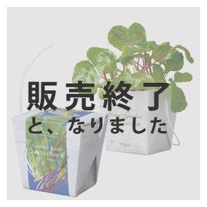 【販売終了】ベジコンテナ(スイスチャード)