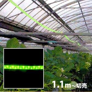 防虫用LEDロープライト[黄緑](防滴)電源セット込