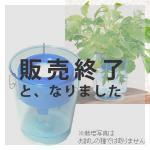 【販売終了】アクアプランターフロートミニ(ブルー)
