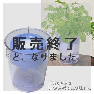 【販売終了】アクアプランターフロートミニ(パープル)