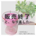 【販売終了】アクアプランターフロートミニ(ピンク)
