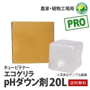[エコゲリラPRO]農家・植物工場用・pHダウン剤(20L)