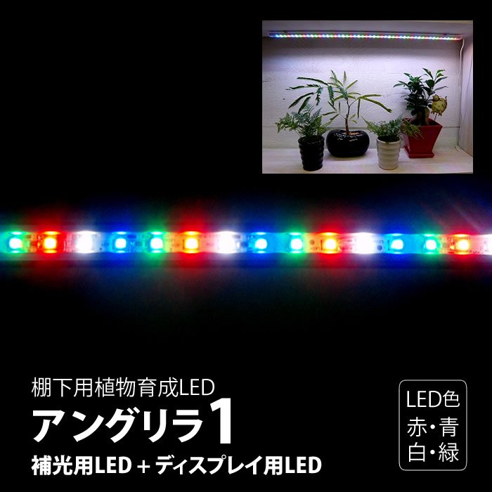 棚下用植物育成LED アングリラ1 ...