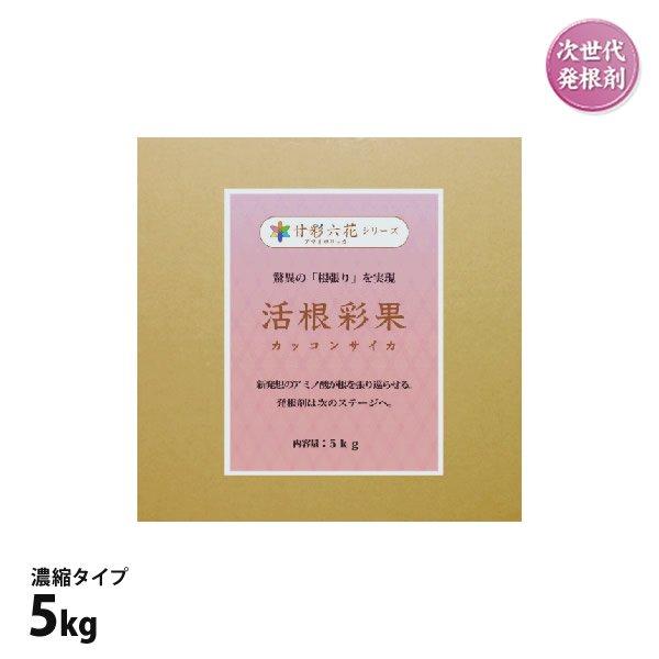 活根彩果(カッコンサイカ)5kg箱入※濃縮タイプ