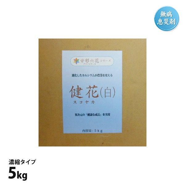 健花(スコヤカ)5kg箱入※濃縮タイプ