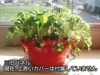 ホームハイポニカ601用葉菜用パネル