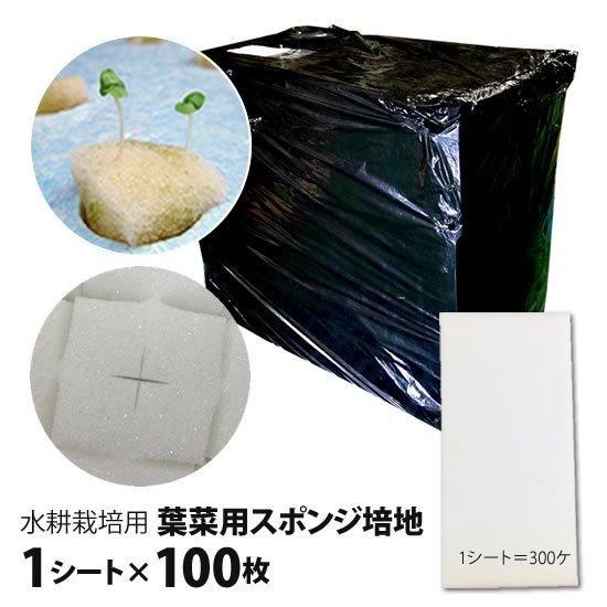 葉菜用培地(スポンジ)100枚セット■直送■