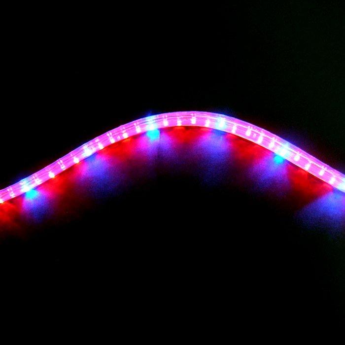 植物育成LEDロープライト[赤・青](防滴)30mロール■直送■