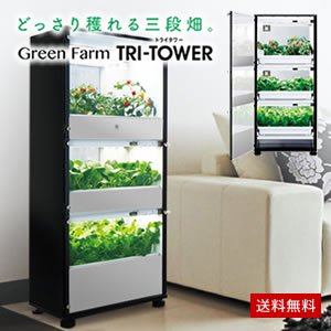 ��̺��ݴ� Green Farm TRI-TOWER(���꡼��ե�����ȥ饤���)��ľ����