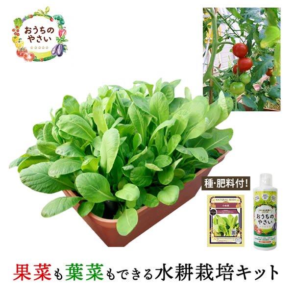 【4月限定特価】家庭菜園プランター栽培セット(水耕栽培・養液栽培)