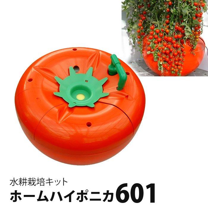 水耕栽培キット ホームハイポニカ601