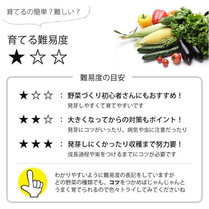有機種子 水菜