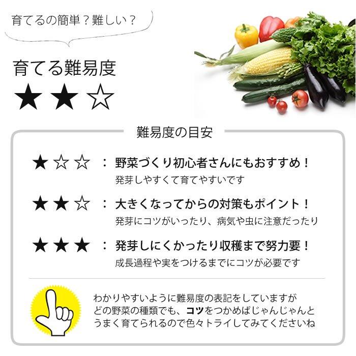 有機種子 レモンバーム/メリッサ