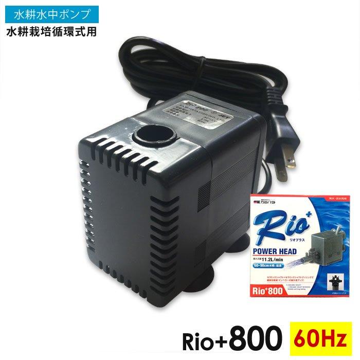 水中ポンプ・水耕栽培循環式用Rio+800(60Hz)