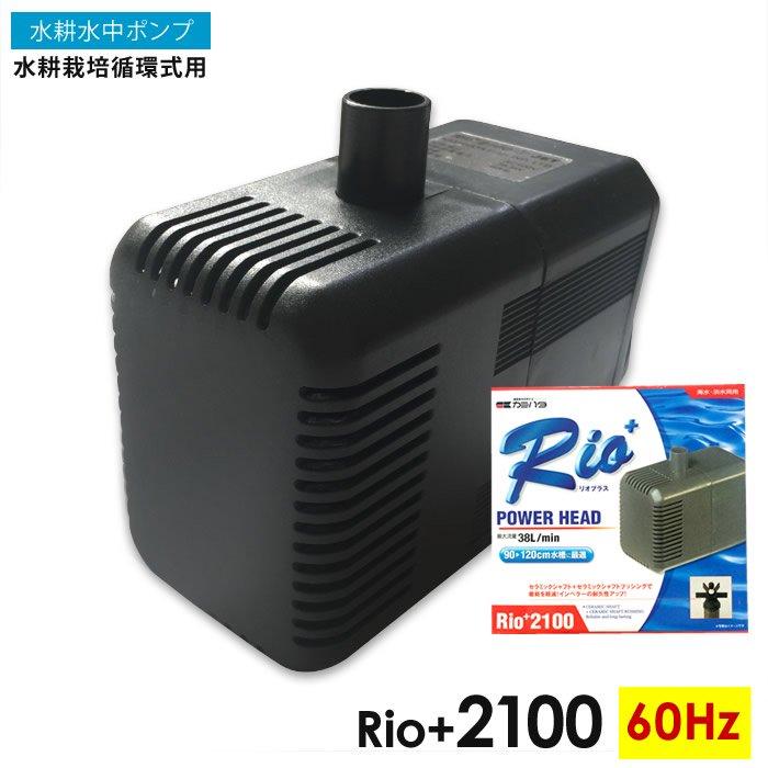 水耕栽培循環式用Rio+2100(60Hz)