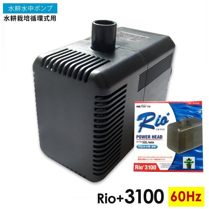 水耕栽培循環式用Rio+3100(60Hz)