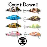 カウントダウン1【王様カラー】