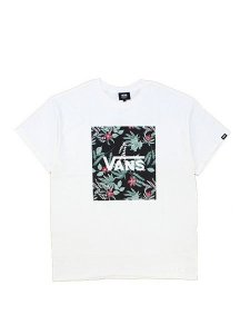 <img class='new_mark_img1' src='https://img.shop-pro.jp/img/new/icons16.gif' style='border:none;display:inline;margin:0px;padding:0px;width:auto;' />30% OFF SALE VANS (ヴァンズ) Flying-V Botanic S/S Tee (Tシャツ) White