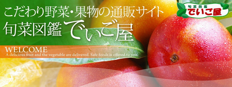 完熟マンゴー|パッションフルーツ|スナックパインの販売【でいご屋】