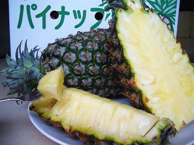 【沖縄東村産】完熟パイン3玉(約5~6kg)