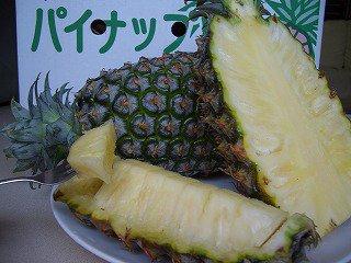 ☆超お得!【送料無料】完熟パイン5~6玉(約10kg) 沖縄県東村産