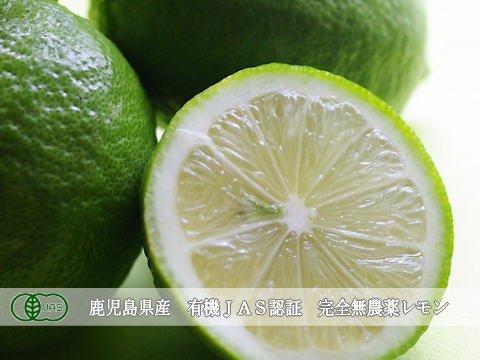 【有機JAS】鹿児島産 無農薬レモン