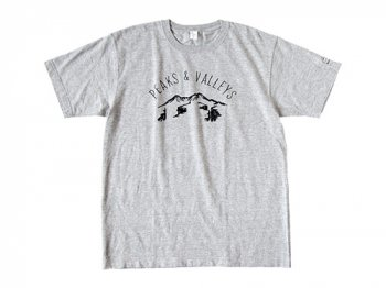 ENDS and MEANS Peaks & Valleys Tee GRAY