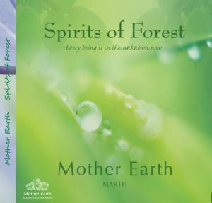 Spirits of forest スピリットオブフォレスト すべては今 未知の中…ジャケット