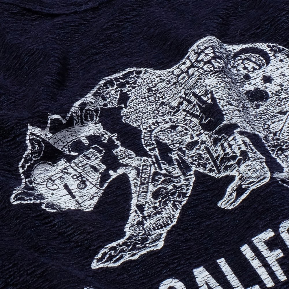 ベンデイビス ONE CALIFORNIA DAY PILE PRINT TEE (BEAR) 詳細画像6