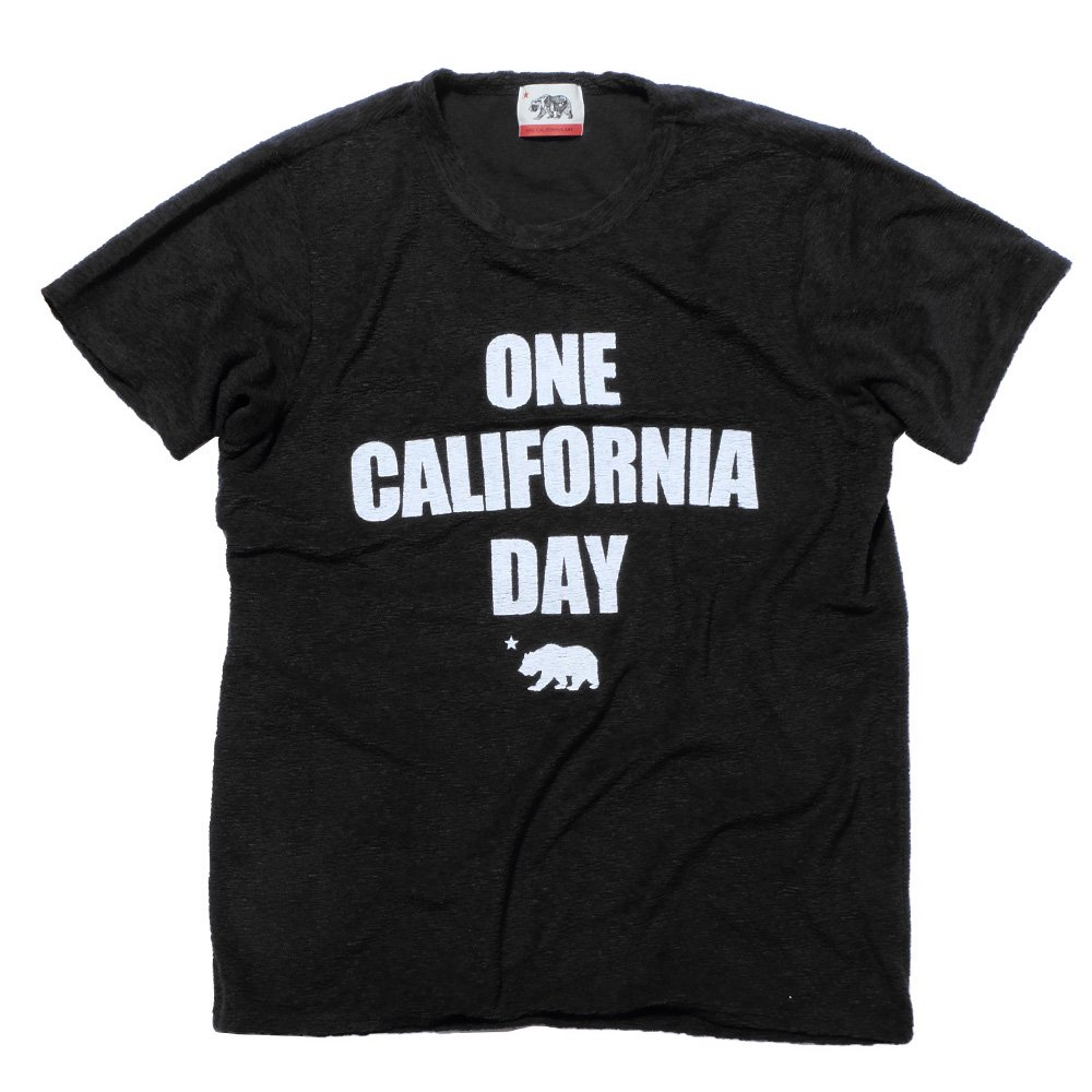 ベンデイビス ONE CALIFORNIA DAY PILE PRINT TEE (TITLE) 詳細画像3