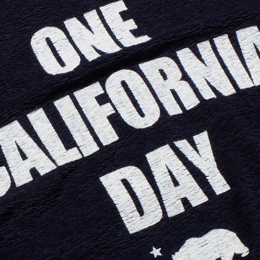 ベンデイビス ONE CALIFORNIA DAY PILE PRINT TEE (TITLE) 詳細画像4