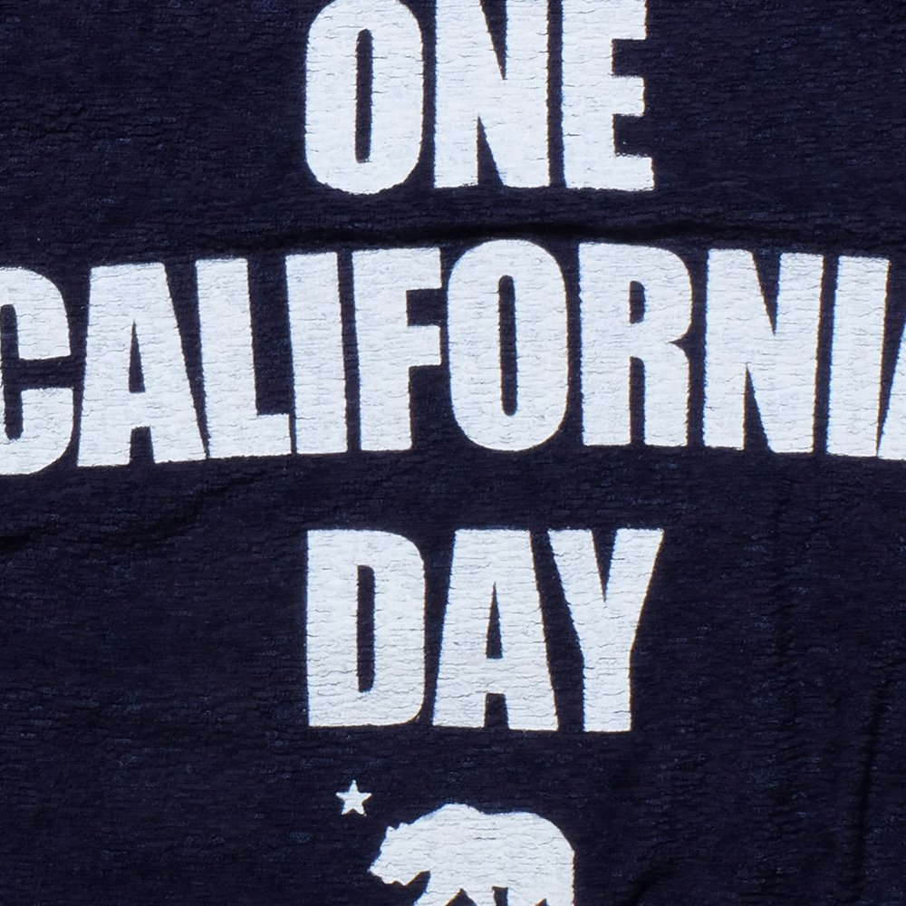 ベンデイビス ONE CALIFORNIA DAY PILE PRINT TEE (TITLE) 詳細画像5